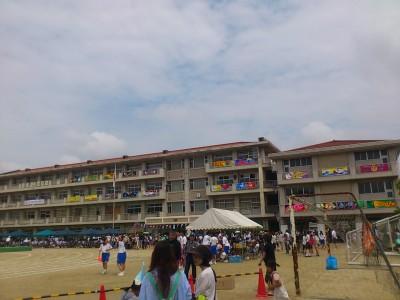 新田体育会